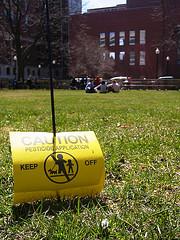spring weather & pesticides