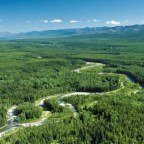 Environmental coalition says BC needs more wildlife refuges