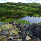 Blackfeet Demand an End to Drilling in Badger-Two Medicine