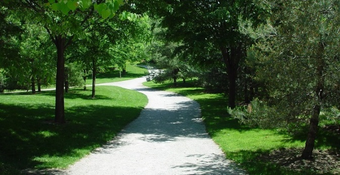 Image from TRCA