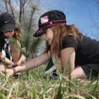 Windsor Community Tree Plant – May 6, 2017