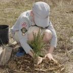 Niagara Community Tree Plant – May 6, 2017