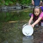 20th Annual Surrey Environmental Extravaganza, April 22 – June 11