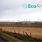 Climate Change and Canadians: New Public Opinion Research by EcoAnalytics