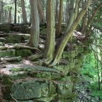 The Story of Building Ontario's Bruce Trail