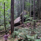 Perseverance Creek collaboration expands Cumberland Community Forest